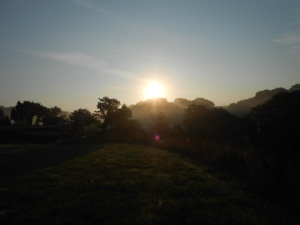 Sheldon sunrise