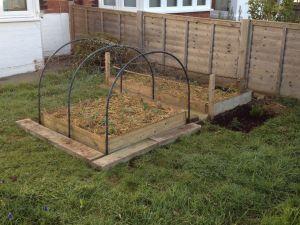 Front veg beds